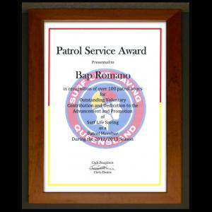 patrol-service